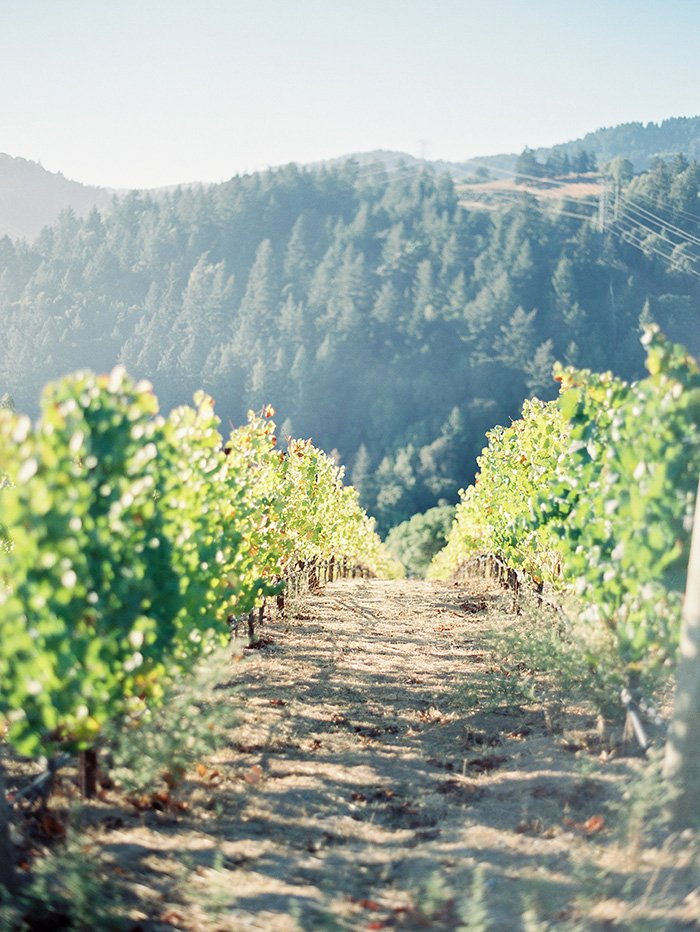 Mountain Winery CA Wedding0042