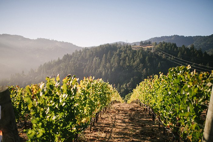 Mountain Winery CA Wedding0050