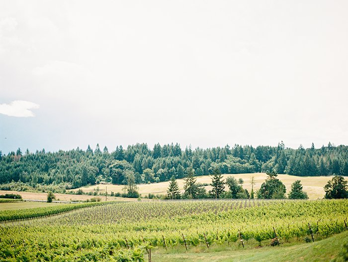 Zenith Vineyard Wedding Salem OR0005